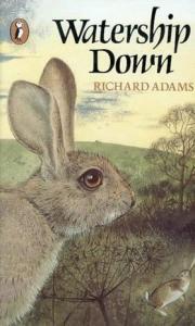 rabbit9